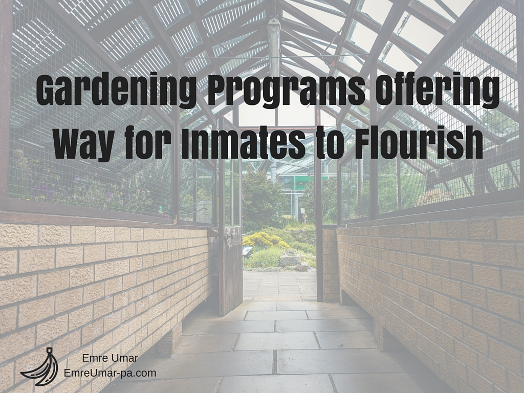 Gardening Programs Offering Way for Inmates to Flourish